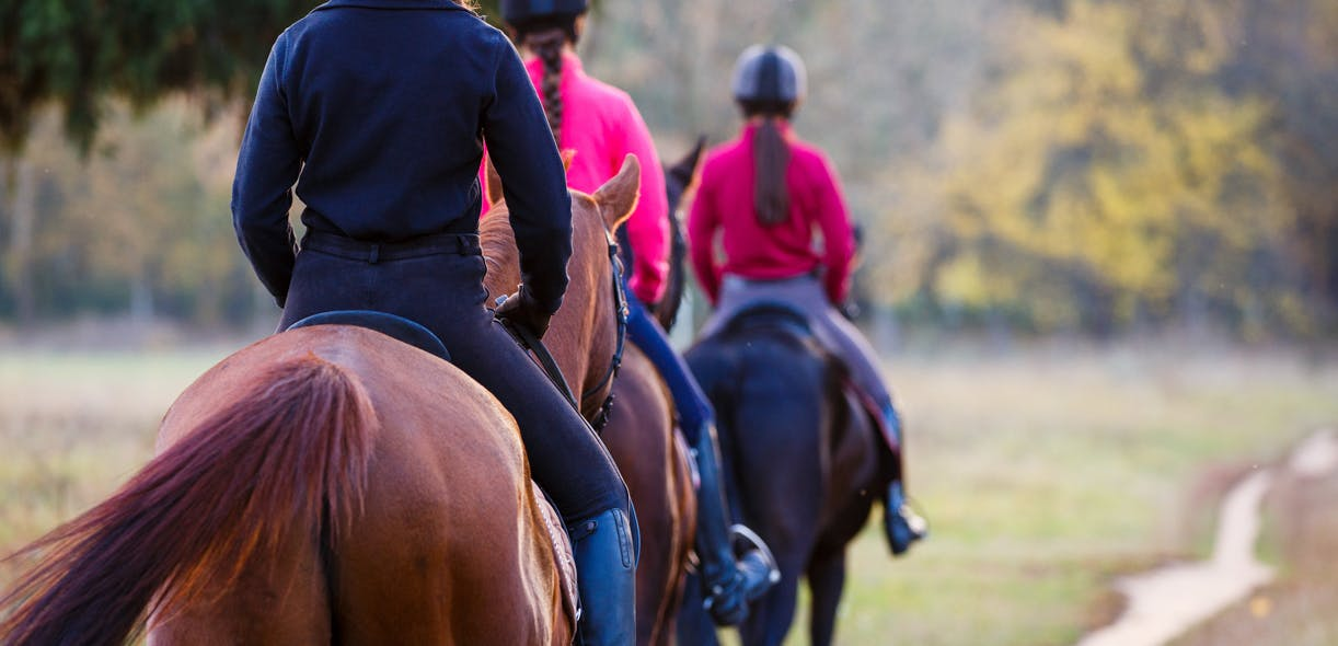 Horse trail etiquette and safety best practices