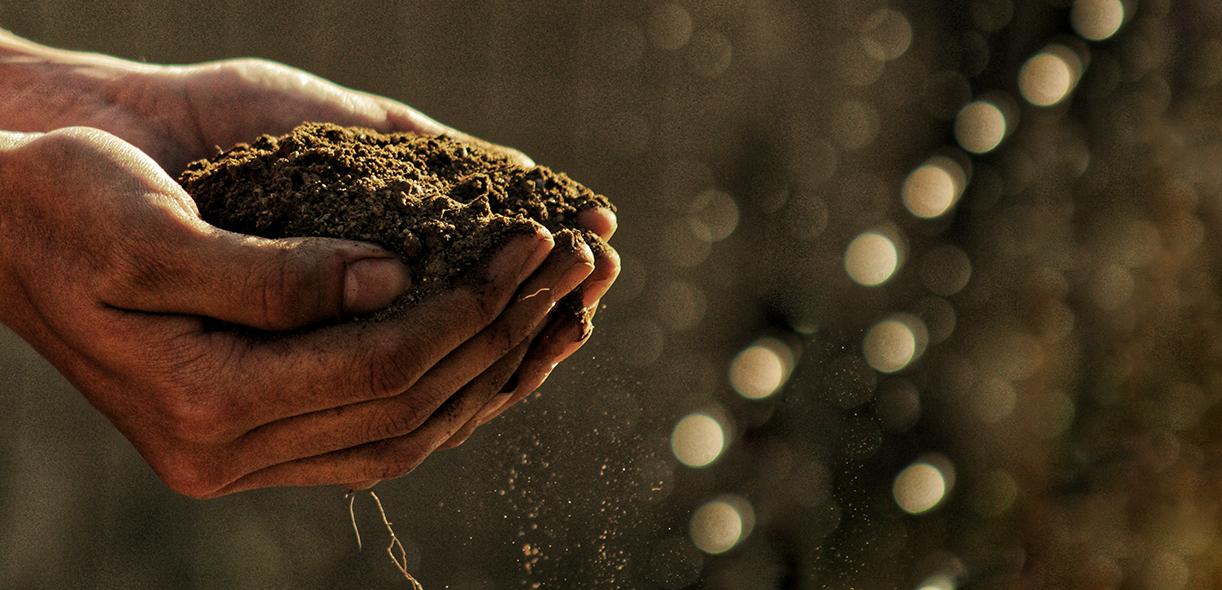 How do we define healthy soil?