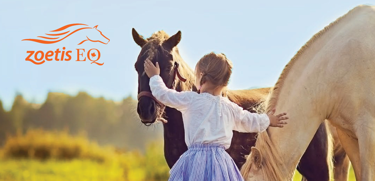 Rabies. Protect your horses. Protect yourself.