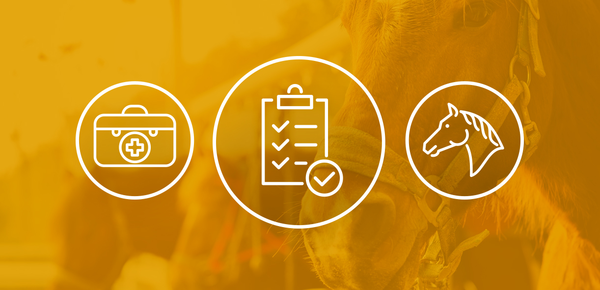 Are you prepared for an equine emergency?